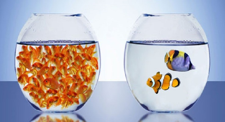 5 Ways 'Quality over Quantity' Can Boost Business
