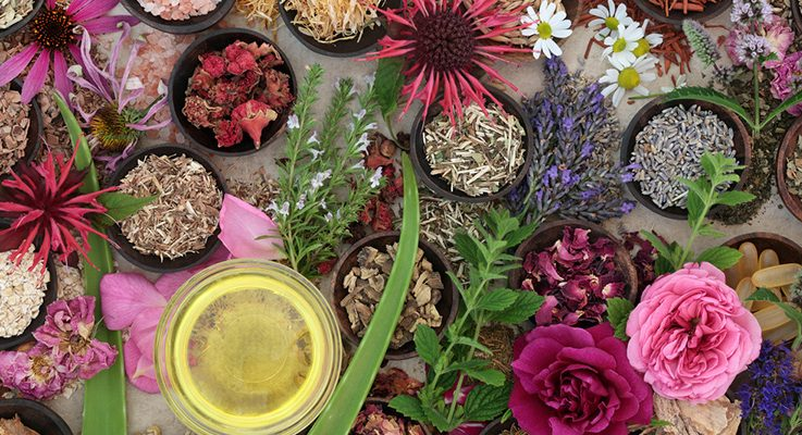 5 Easy To Find Ayurvedic Herbs For Everyday Skin Care